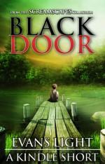 Black Door - Evans Light