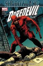Daredevil (1998-2011) #508 - Andy Diggle, Antony Johnston, Rob DeLatorre, Matt Hollingsworth, John Cassaday