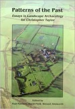 Patterns of the Past: Essays in Landscape for Christopher Taylor - Paul Pattison, David Field, Stewart Ainsworth