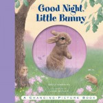 Good Night, Little Bunny: A Changing-Picture Book - Emily Hawkins, John Butler