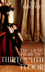 The View from the Thirteenth Floor - A.M. Hartnett