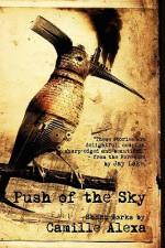 Push of the Sky - Camille Alexa