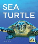 Sea Turtle - Anders Hanson