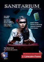 Sanitarium #17 (Horror Fiction and Dark Verse) Magazine - Fallon Stoeffler, Charles Brownson, Rob Walsh, Gary Scroggins, Davinder Johal, Robert Stava, Rachel Villalobos, Jacob Lambert, Luke Tarzian, Barry Skelhorn
