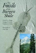The Fossils of the Burgess Shale - Derek E.G. Briggs, Douglas H. Erwin, Frederick J. Collier