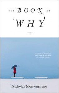 The Book of Why: A Novel - Nicholas Montemarano