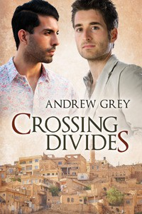 Crossing Divides - Andrew  Grey