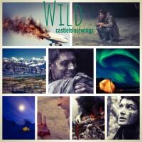 Wild - Castielslostwings