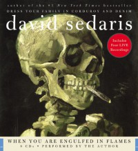 When You Are Engulfed In Flames - David Sedaris