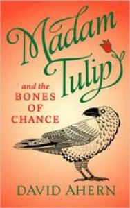 Madam Tulip and the Bones of Chance - David W. Ahern