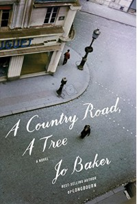 A Country Road, A Tree: A novel - Jo Baker