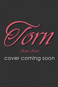 Torn (Connections, #2) - Kim Karr
