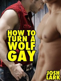 How to Turn a Wolf Gay (An M/m Werewolf Submission Erotica Story) - Josh Lark