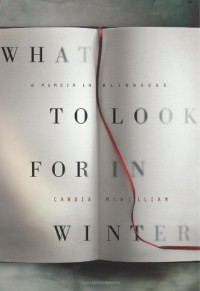 What to Look for in Winter: A Memoir in Blindness - Candia McWilliam