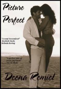 Picture Perfect - Deena Remiel