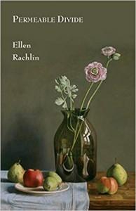 Permeable Divide - Ellen Rachlin