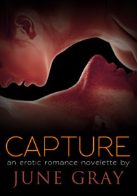 Capture (DISARM, #6) - June Gray