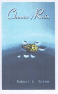 Chance of Rain - Robert Brimm