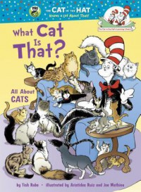 What Cat Is That?: All About Cats - Tish Rabe, Aristides Ruiz, Joe Mathieu