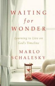 Waiting for Wonder: Learning to Live on God's Timeline - Marlo Schalesky