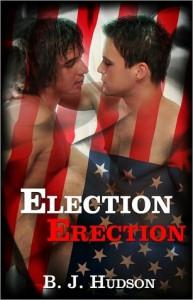 Election Erection - B.J. Hudson