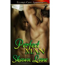 Perfect Man - Shawn Lane