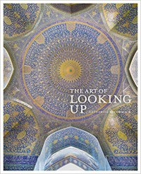The Art of Looking Up - Catherine McCormack
