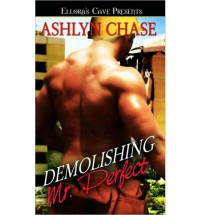 Demolishing Mr. Perfect - Ashlyn Chase