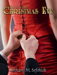 On A Cold Christmas Eve - Bethany M. Sefchick