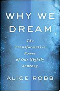 Why We Dream: The Transformative Power of Our Nightly Journey - Alice Robb