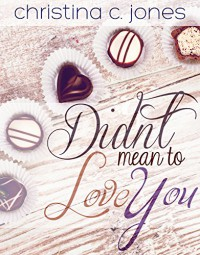 Didn't Mean To Love You (Serendipitous Love Book 2) - Christina C Jones
