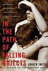 In the Path of Falling Objects - Andrew  Smith