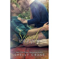 Smash Into You - Shelly Crane