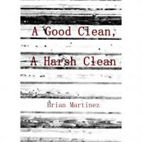 A Good Clean, A Harsh Clean - Brian Martinez
