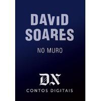 No Muro - David Soares