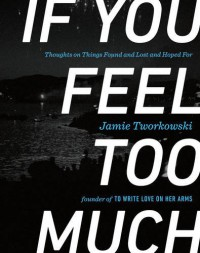 If You Feel Too Much: Thoughts on Things Found and Lost and Hoped For - Jamie Tworkowski, Donald Miller