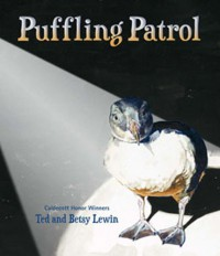 Puffling Patrol - Ted Lewin, Betsy Lewin
