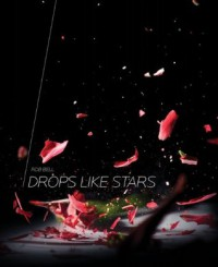Drops Like Stars - Rob Bell