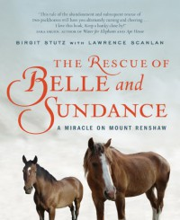 The Rescue of Belle and Sundance: A Miracle on Mount Renshaw - Birgit Stutz