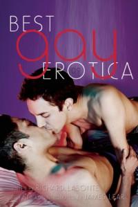 Best Gay Erotica 2009 - James Lear, Richard Labonté, Simon Sheppard, Robert Patrick, Jeff Mann, Jamie Freeman, Natty Soltesz