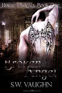 Broken Angel - S.W. Vaughn