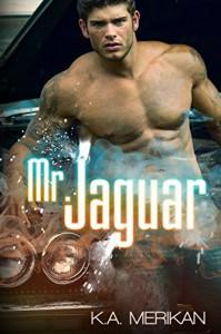 Mr. Jaguar (contemporary gay cinderfella erotic romance) - K.A. Merikan