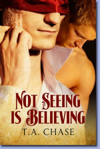 Not Seeing Is Believing - T.A. Chase