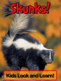 Skunks! Learn About Skunks and Enjoy Colorful Pictures - Look and Learn! (50+ Photos of Skunks) - Becky Wolff