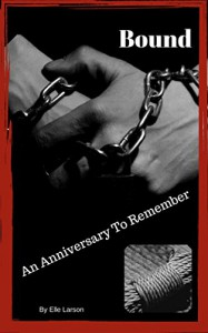 Bound: An Anniversary to Remember (Bound to Each Other Book 1) - Elle Larson