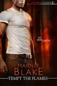 Tempt the Flames - Marnee Blake