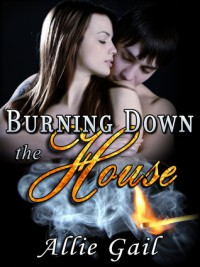 Burning Down the House - Allie Gail