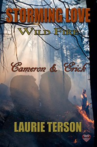 Cameron & Erick (Storming Love: Wild Fire Book 3) - Laurie Terson