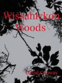 The Wissahickon Woods - David Conway