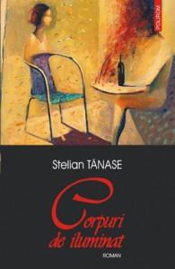 Corpuri de iluminat - Stelian Tănase